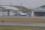 プレミアムさんが、那覇空港で撮影した航空自衛隊 F-15J Eagleの航空フォト(写真)