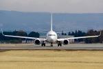 bravotaisei787さんが、熊本空港で撮影した日本航空 737-846の航空フォト(写真)