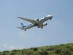 おっつんさんが、新石垣空港で撮影した全日空 787-881の航空フォト(写真)
