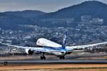 we love kixさんが、伊丹空港で撮影した全日空 787-9の航空フォト(写真)