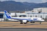はっしーさんが、伊丹空港で撮影した全日空 787-881の航空フォト(写真)