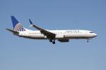 utarou on NRTさんが、成田国際空港で撮影したユナイテッド航空 737-824の航空フォト(写真)