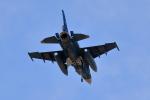 はやっち!さんが、岐阜基地で撮影した航空自衛隊 F-2Aの航空フォト(写真)