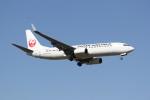 utarou on NRTさんが、成田国際空港で撮影した日本航空 737-846の航空フォト(写真)