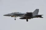 350JMさんが、厚木飛行場で撮影したアメリカ海軍 EA-18G Growlerの航空フォト(写真)