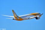 吉田高士さんが、成田国際空港で撮影したスクート 787-9の航空フォト(写真)
