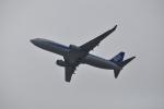 うすさんが、関西国際空港で撮影した全日空 737-881の航空フォト(写真)