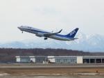 いおんさんが、新千歳空港で撮影した全日空 737-881の航空フォト(写真)