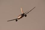 Kenny600mmさんが、伊丹空港で撮影した全日空 777-281の航空フォト(写真)