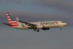 ゴンタさんが、ダラス・フォートワース国際空港で撮影したアメリカン航空 737-823の航空フォト(写真)