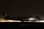 中トロ・バジーナさんが、羽田空港で撮影したタイ国際航空 747-4D7の航空フォト(写真)