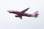 ガス屋のヨッシーさんが、関西国際空港で撮影したピーチ A320-214の航空フォト(写真)