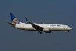 よしポンさんが、成田国際空港で撮影したユナイテッド航空 737-824の航空フォト(写真)