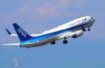 Tomo_ritoguriさんが、中部国際空港で撮影した全日空 737-881の航空フォト(写真)