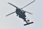 500さんが、自宅上空で撮影したアメリカ海軍 MH-60R Seahawk (S-70B)の航空フォト(写真)