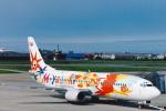 菊池 正人さんが、宮崎空港で撮影した日本航空 737-446の航空フォト(写真)