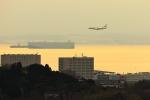 Rundy's Airgraphyさんが、中部国際空港で撮影した日本航空 737-846の航空フォト(写真)