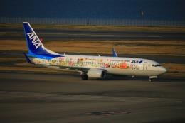 KAMIYA JASDFさんが、羽田空港で撮影した全日空 737-881の航空フォト(写真)