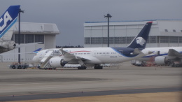 AE31Xさんが、成田国際空港で撮影したアエロメヒコ航空 787-8 Dreamlinerの航空フォト(写真)