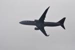 うすさんが、関西国際空港で撮影したティーウェイ航空 737-8Q8の航空フォト(写真)