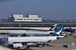 金魚さんが、中部国際空港で撮影したキャセイパシフィック航空 A330-343Xの航空フォト(写真)
