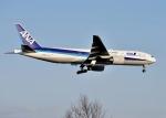 バーダーさんさんが、新千歳空港で撮影した全日空 777-281/ERの航空フォト(写真)