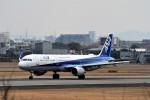 JA946さんが、伊丹空港で撮影した全日空 A321-211の航空フォト(写真)