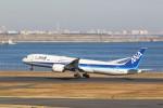 OS52さんが、羽田空港で撮影した全日空 787-9の航空フォト(写真)