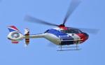 Soraya_Projectさんが、栃木ヘリポートで撮影した毎日新聞社 EC135T1の航空フォト(写真)