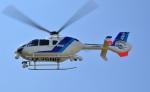 Soraya_Projectさんが、栃木ヘリポートで撮影したオールニッポンヘリコプター EC135T2の航空フォト(写真)