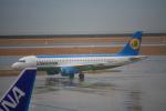 きったんさんが、中部国際空港で撮影したウズベキスタン航空 A320-214の航空フォト(写真)
