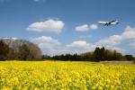 竜747さんが、成田国際空港で撮影した全日空 767-381/ER(BCF)の航空フォト(写真)