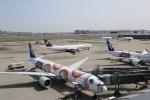sakurasakuさんが、羽田空港で撮影した全日空 777-381/ERの航空フォト(写真)
