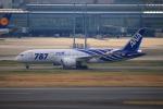 KAMIYA JASDFさんが、羽田空港で撮影した全日空 787-881の航空フォト(写真)