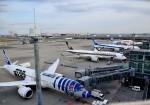 mojioさんが、羽田空港で撮影した全日空 787-9の航空フォト(写真)