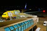 こゆたんさんが、新千歳空港で撮影した全日空 777-281/ERの航空フォト(写真)