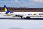 Ariesさんが、新千歳空港で撮影したスカイマーク 737-86Nの航空フォト(写真)