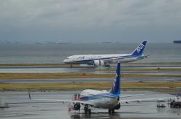 SOMAさんが、羽田空港で撮影した全日空 787-881の航空フォト(写真)