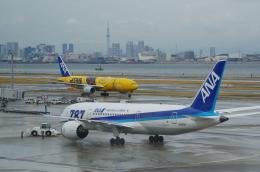 SOMAさんが、羽田空港で撮影した全日空 777-281/ERの航空フォト(写真)