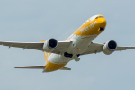 みぐさんが、成田国際空港で撮影したスクート 787-9の航空フォト(写真)