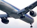 tkosadaさんが、羽田空港で撮影した全日空 777-381の航空フォト(写真)