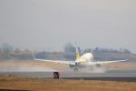 syo12さんが、函館空港で撮影したAIR DO 737-781の航空フォト(写真)
