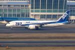 Airbus350さんが、福岡空港で撮影した全日空 787-881の航空フォト(写真)