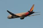 ぷぅぷぅまるさんが、関西国際空港で撮影したアシアナ航空 777-28E/ERの航空フォト(写真)
