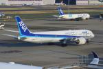 せぷてんばーさんが、羽田空港で撮影した全日空 787-9の航空フォト(写真)