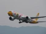 イブラさんが、関西国際空港で撮影したスクート 787-9の航空フォト(写真)