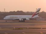 ばやさんが、成田国際空港で撮影したエミレーツ航空 A380-861の航空フォト(写真)