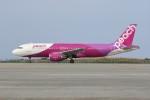 JA882Aさんが、那覇空港で撮影したピーチ A320-214の航空フォト(写真)
