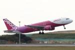 A-Chanさんが、那覇空港で撮影したピーチ A320-214の航空フォト(写真)