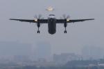 Rundy's Airgraphyさんが、伊丹空港で撮影したANAウイングス DHC-8-402Q Dash 8の航空フォト(写真)